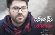 همه چیز درباره حامد همایون پدیده جدید موسیقی ایران