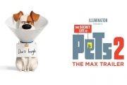 تریلر رسمی قسمت دوم انیمیشن زندگی مخفی حیوانات خانگی