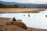 نقد بررسی فیلم درخت گلابی وحشی نوری بیگله جیلان