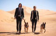 تیزر و پوستر رسمی فیلم John Wick 3: Parabellum (جان ویک ۳: پارابلوم)