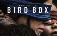 رکورد بیننده نتفلیکس با فیلم Bird Box شکسته شد