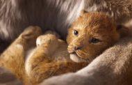 تبلیغ تلویزیونی و پوستر فیلم شیر شاه (The Lion King 2019)