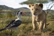 تریلر جدید شیر شاه ۲۰۱۹