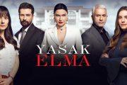 نقد بررسی سریال ترکی سیب ممنوعه شبکه جم