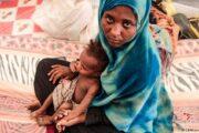 ساعت ۲۴هزار یورویی نماینده یمن در دیدار رئیسی